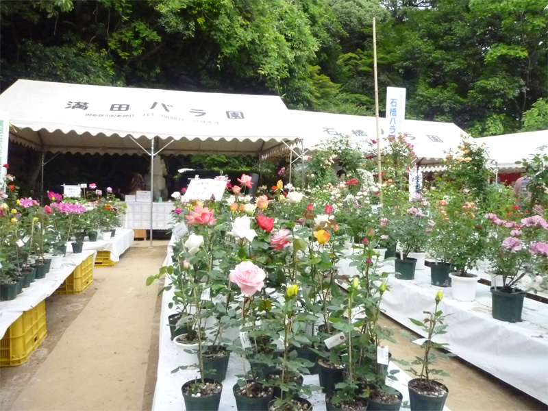 http://www.bansuisou.org/guide_dtl/images/P1010901.JPG